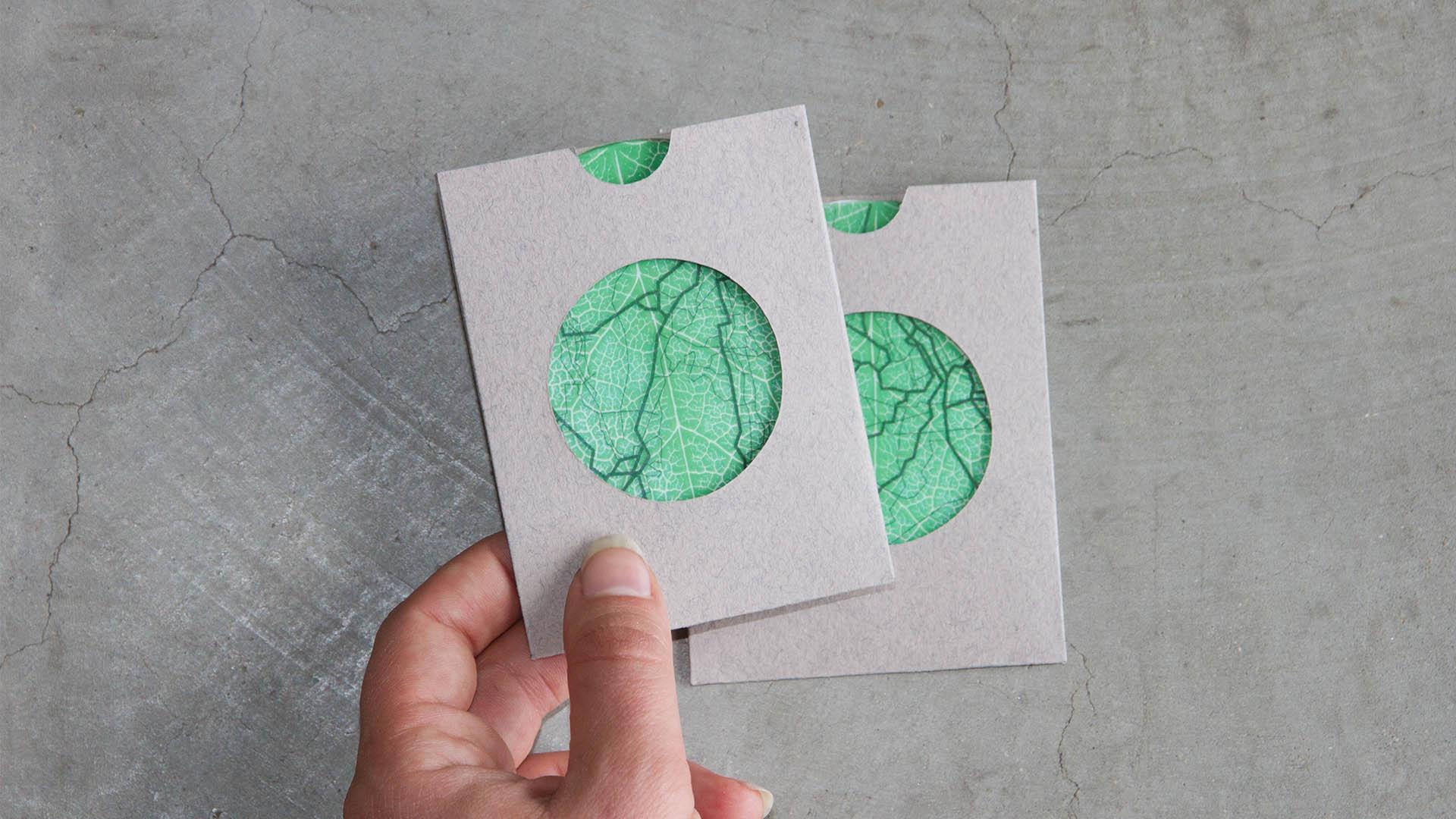 Liisa Roll Biomimicry